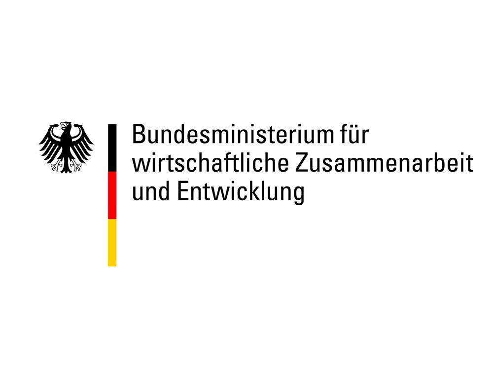 BMWZE Logo